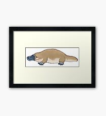 Little platypus - Animals series Framed Print