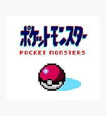 Pocket Monsters Photographic Print