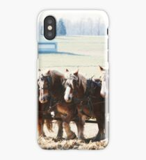 Gathering Up the Hay With a Six Horse Team iPhone Case/Skin