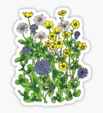 Daisies Buttercups and Clover Sticker