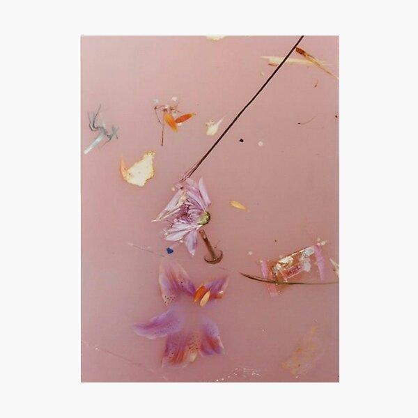 Flores rosadas Lámina fotográfica