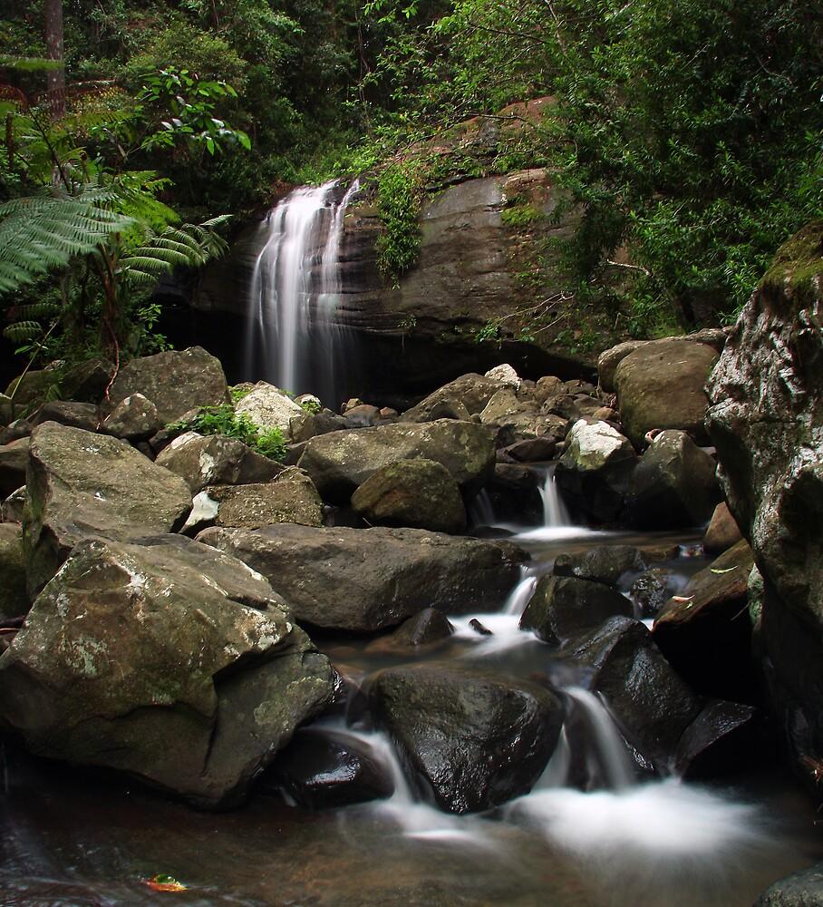Serenity Falls by David James