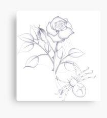 Spider rose Canvas Print