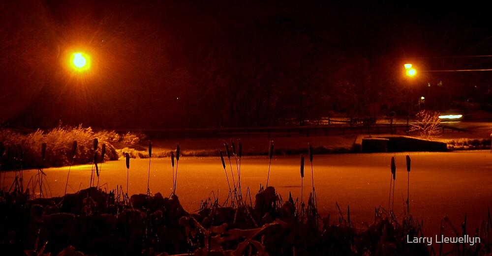 A Night Shot... by Larry Llewellyn