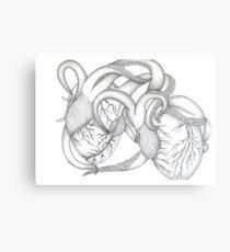 Octopus hearts Canvas Print