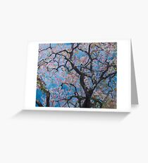 Underneath the cherry tree, full bloom Greeting Card