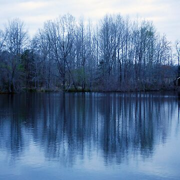 Predawn Reflections by MaupinPhoto