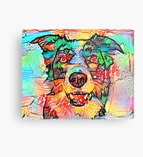 Collie Border Metal Print