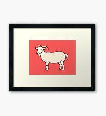 Cutie Goatie Framed Print