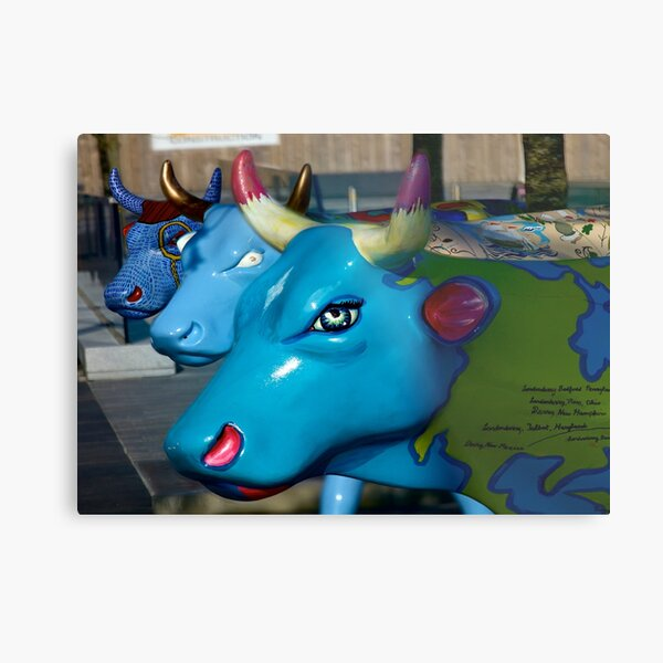 Three Cows on Parade, Ebrington Sq, Derry Metal Print