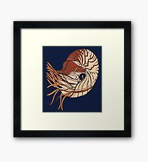 Nautilus Drawing Framed Print