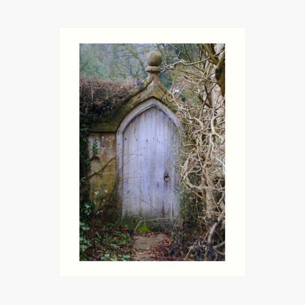 Door of imagination Art Print