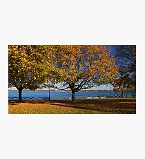 Palmer Park in Fall 7 Photographic Print