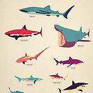 «Tiburones» de greatskybear