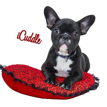 iCuddle French Bulldog by Shana1065