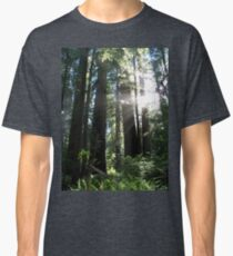 Redwood National Park  Classic T-Shirt
