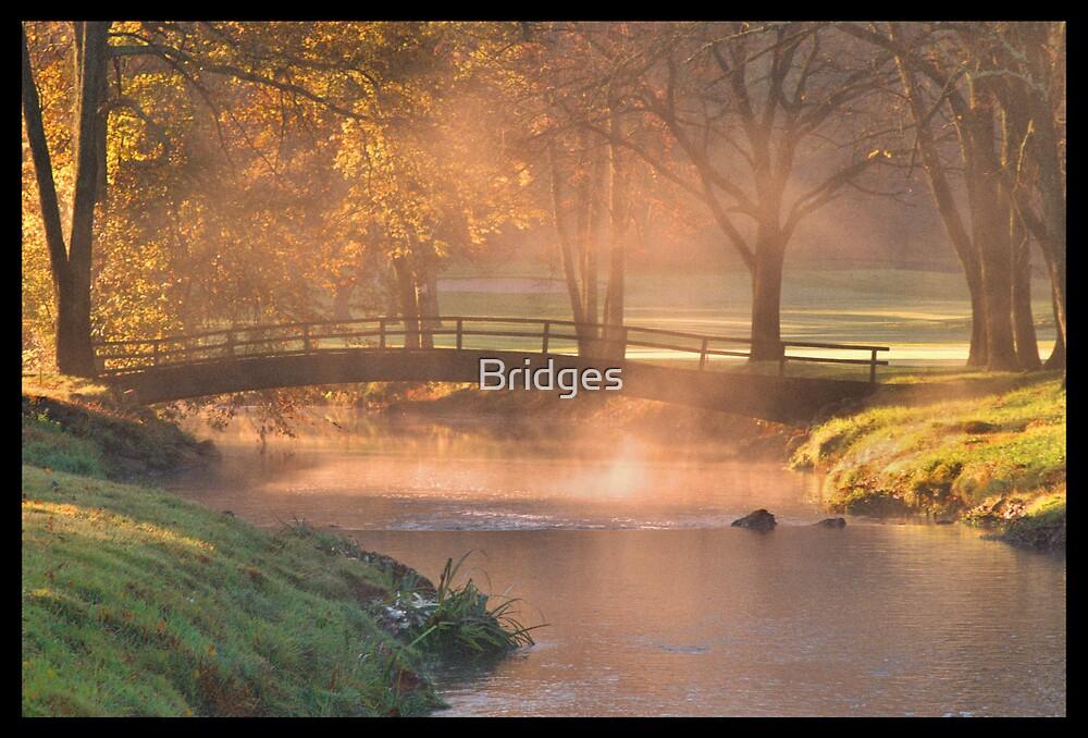 Misty Morning Autum on Saucon Creek by Bridges