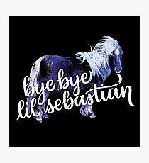 Lil Sebastian Photographic Print