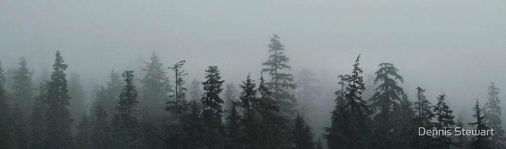 Misty Tree's by Dennis Stewart