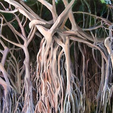 """Banyan Stand, Magnetic Island"" by belle2"