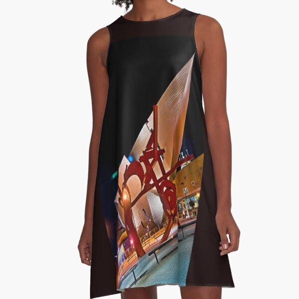 Denver Museum of Art A-Line Dress