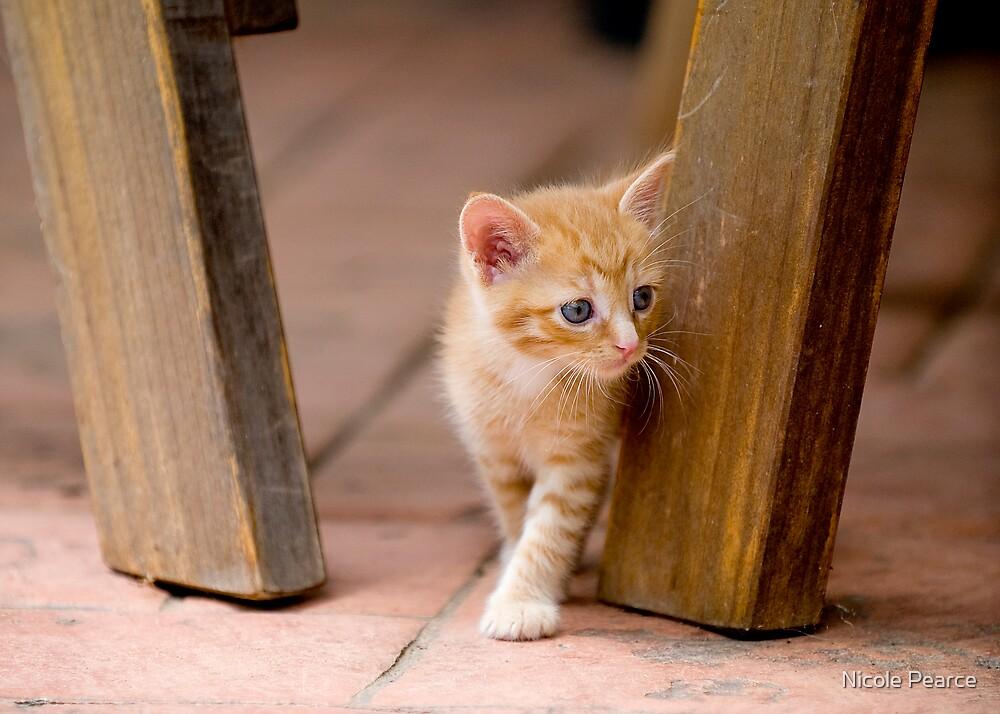 Kitty by Nicole Pearce