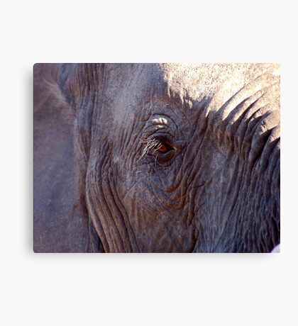 EYESIGHT Canvas Print
