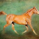 Chestnut Arabian Horse Trotting  by Michelle Wrighton