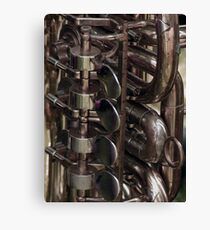 Trumpet, horn really! Canvas Print