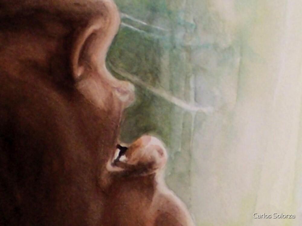 Beyond Talk by Carlos Solorza