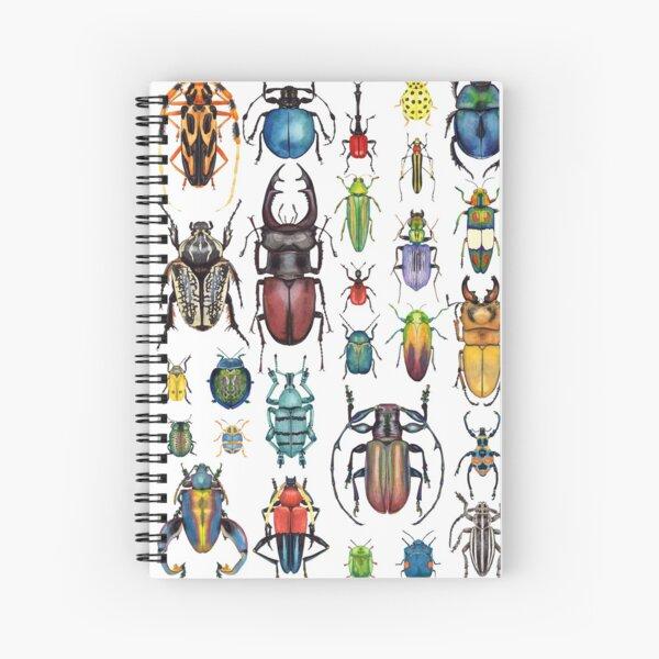 Käfer-Sammlung Spiralblock