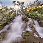 Hollonds Creek cascades by Kevin McGennan