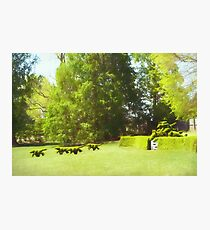 Ladew's Topiary Hunt Photographic Print