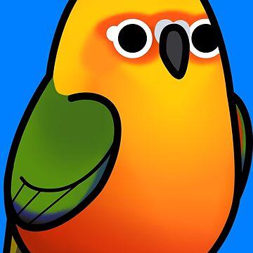 ¡Demasiadas aves! - Jenday Conure / Jendaya Parakeet de MaddeMichael