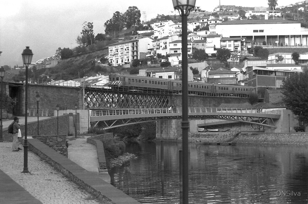 Pocinho Bridge by DNSilva