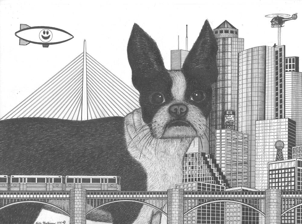 Boston Terrier  by Richie Montgomery
