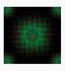 Light Green Sunflower Photographic Print