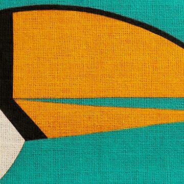 Toucan by FernandoVieira