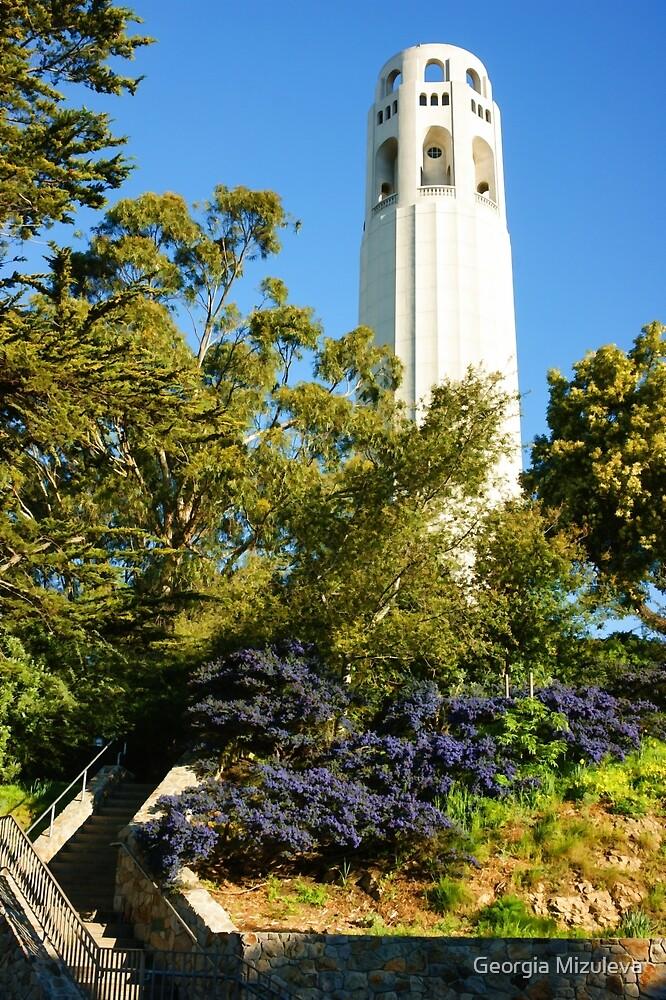 Coit Tower the Pinnacle of Telegraph Hill in San Francisco California by Georgia Mizuleva