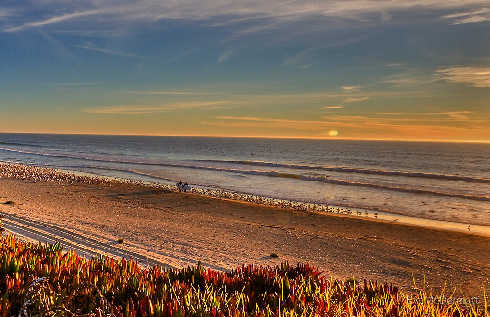 Surfers Half Moon Bay by EvaMcDermott