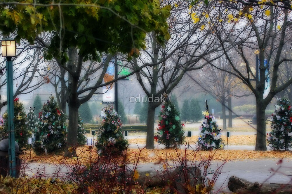 CHRISTMAS AT THE ZOO by cdudak