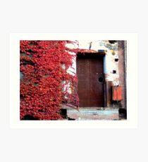 Door and Vines  Art Print