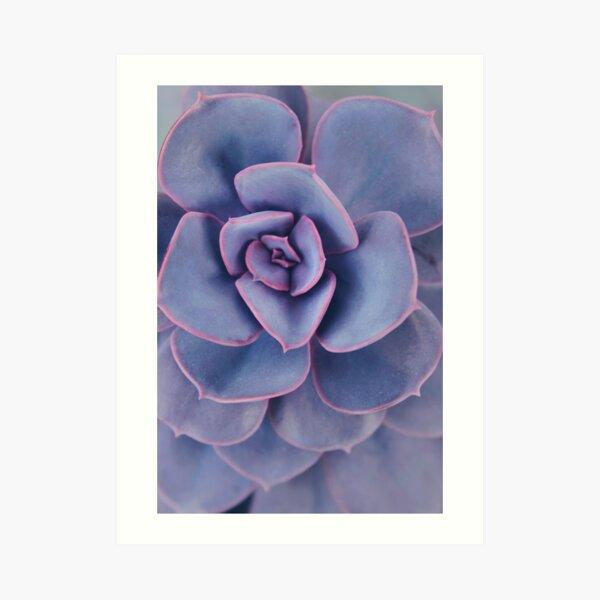 Purple Pearl Art Print