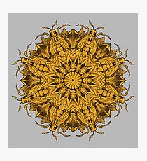 Mandala 1 Photographic Print