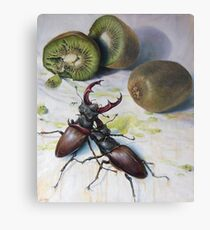 """ Kiwis and Stag Beetles ( Struggle for Constancy)"" Metal Print"