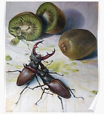 """ Kiwis and Stag Beetles ( Struggle for Constancy)"" Poster"