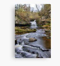 Cauldron Force Canvas Print