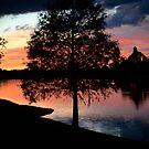 November Sunset in Alva Florida by designingjudy