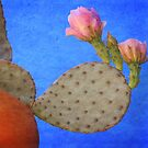 Simply Desert  by Judy Ann  Grant