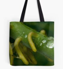 Wet Rhizomes Tote Bag